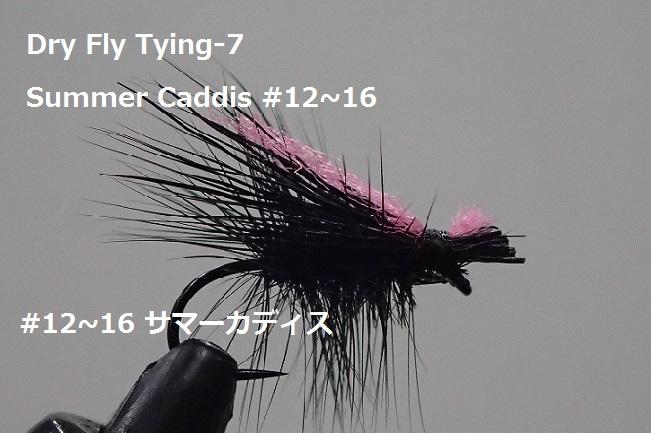 #12~16 Summer Caddis サマーカディス