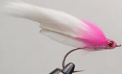 #2 イワシゾンカー ピンクヘッド